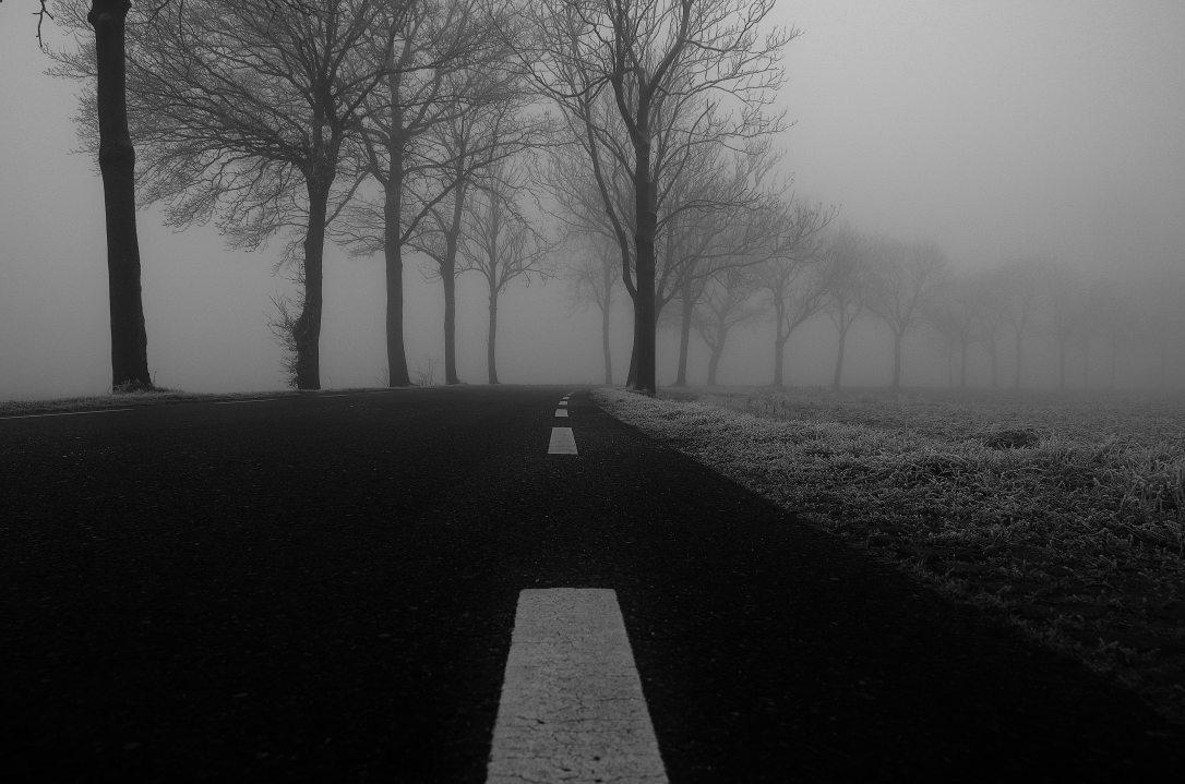 avenue-bend-black-and-white-4241
