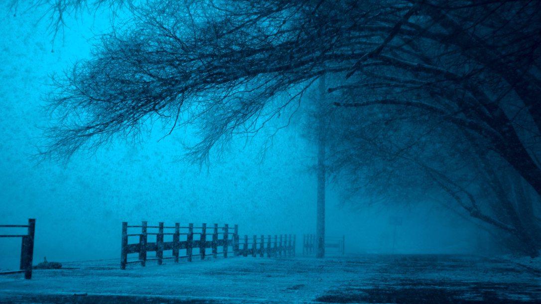 cold-dark-eerie-207985