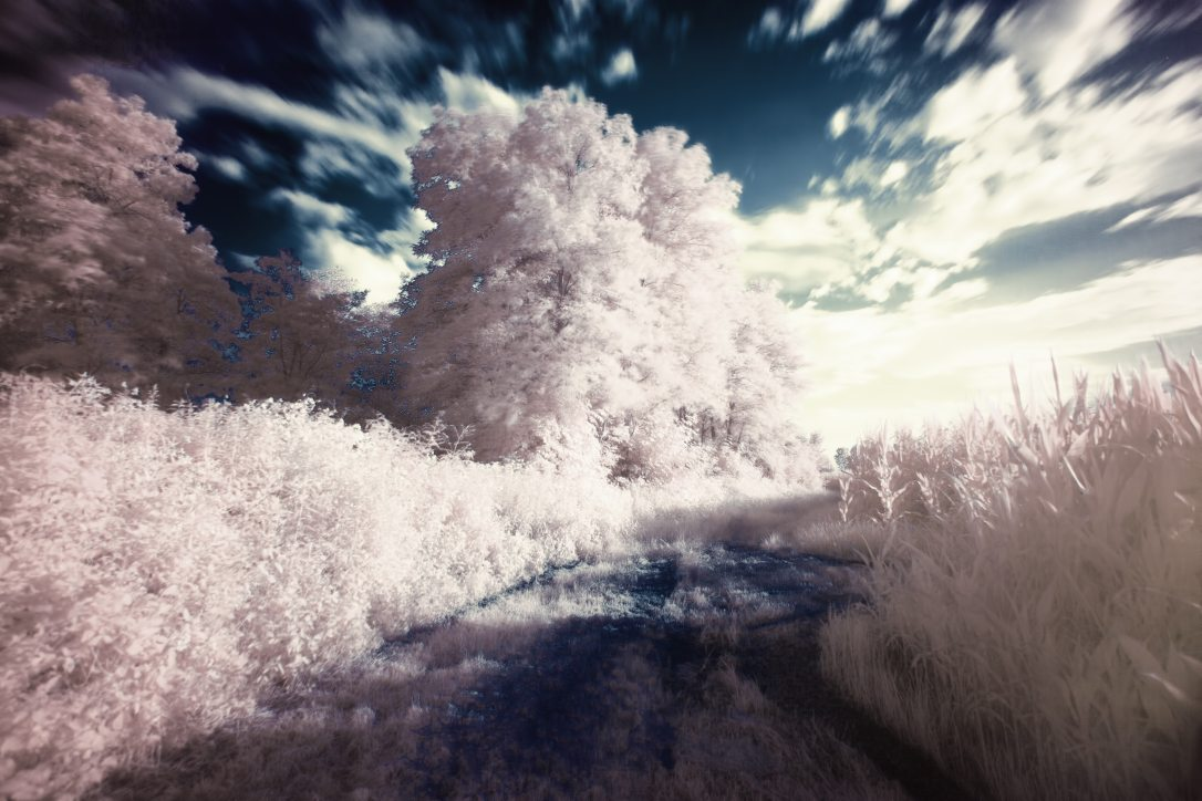 dream-filter-infrared-2222