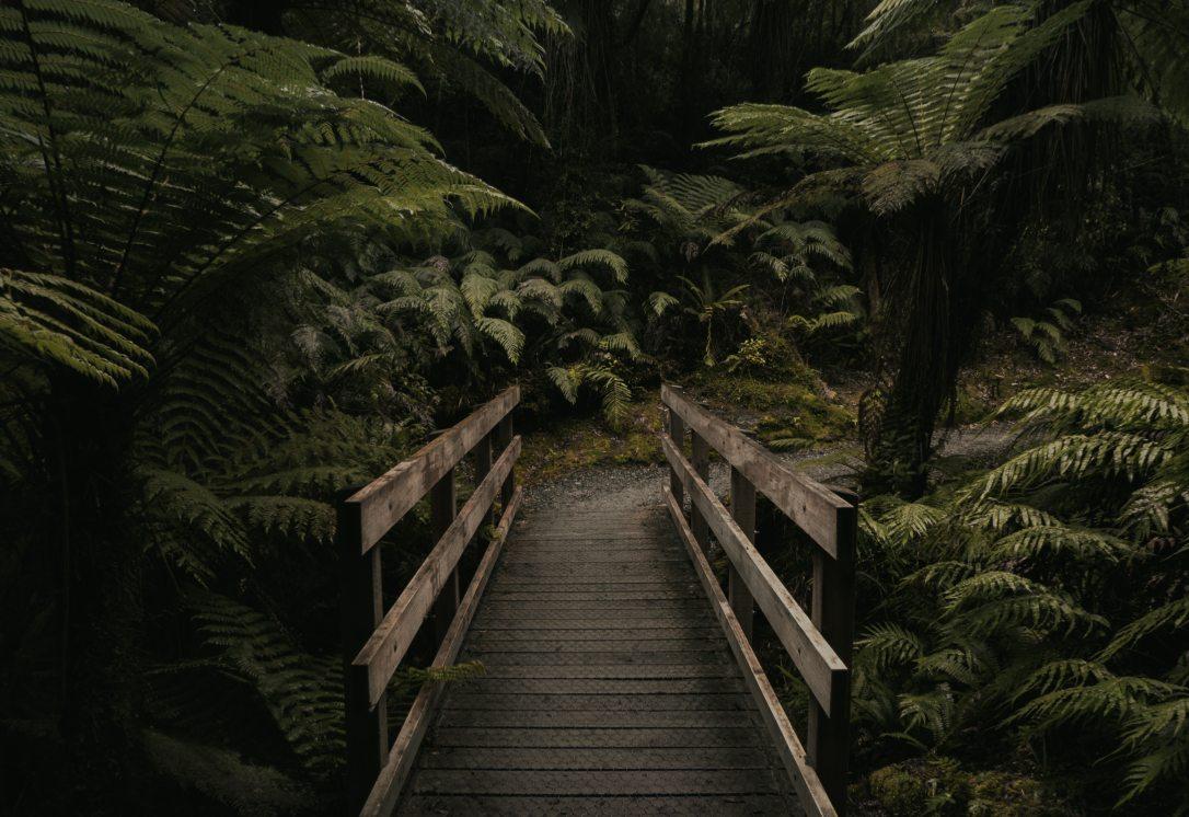 beautiful-bridge-dark-967420