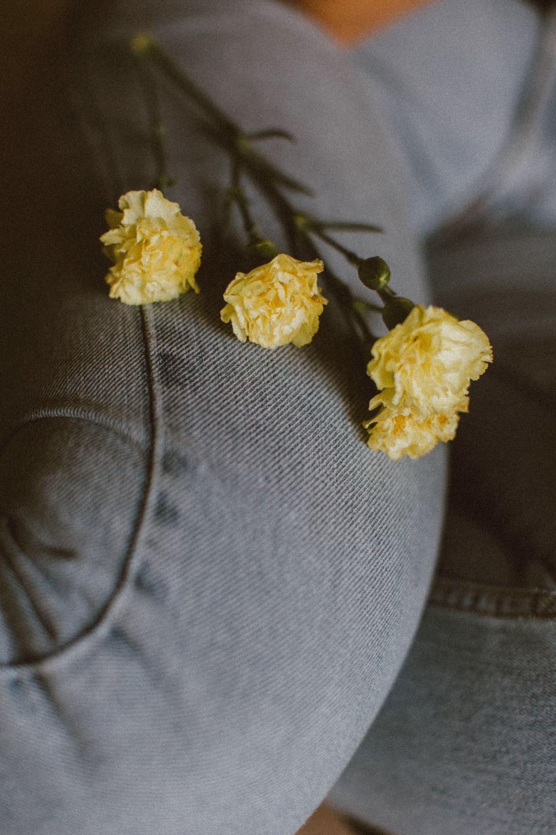 frank-flores-EWhD0Fp2_jY-unsplash